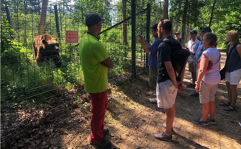 Tourists at the Bear Sanctuary in Zarnesti.
