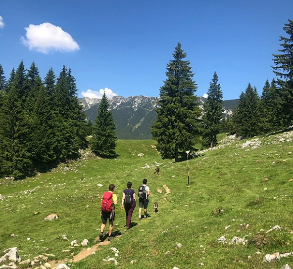 Hiking in the Wild Transylvania