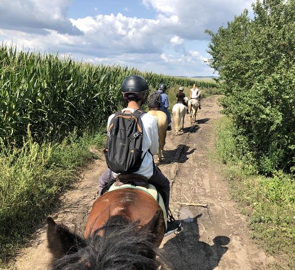 Horseback riding in Brasov.