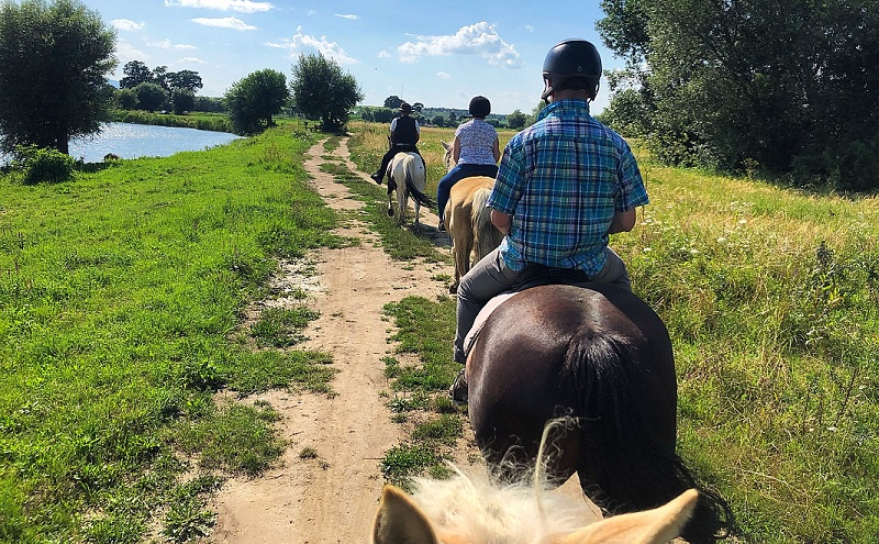Horseback riding in Transylvania